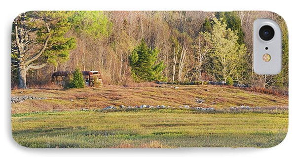 Maine Blueberry Field In Spring IPhone Case