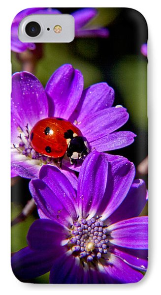 Red Lady In Lavender IPhone Case