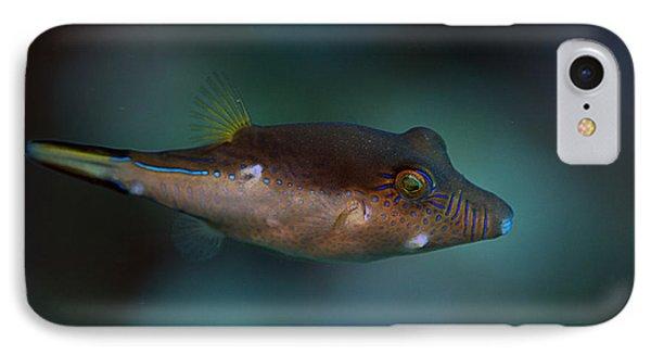 Sharpnose Puffer IPhone Case