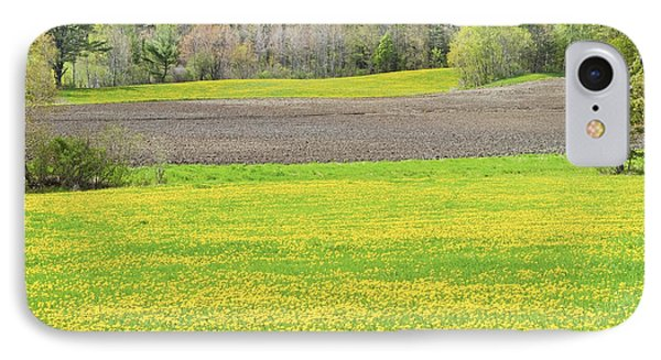 Spring Farm Landscape With Dandelion Bloom In Maine IPhone Case