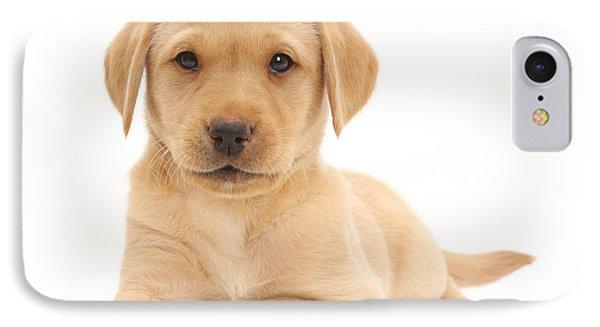 Yellow Labrador Retriever Puppy IPhone Case