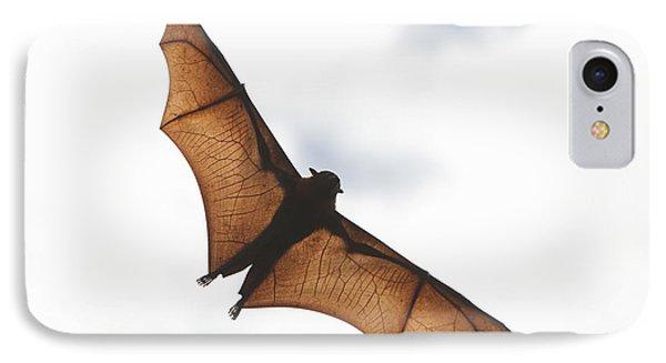 Flying Bat IPhone Case