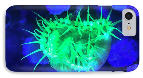 Belize iPhone 8 Case - Night Dive At Barrier Reef, Saint by Stuart Westmorland