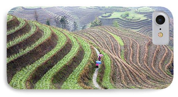 Rice Terraces IPhone Case