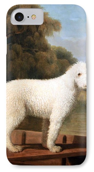 Stubbs' White Poodle In A Punt IPhone Case