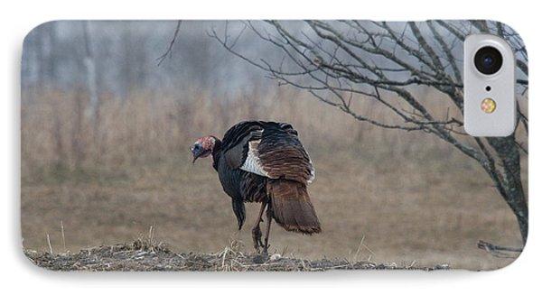Male Eastern Wild Turkey IPhone Case
