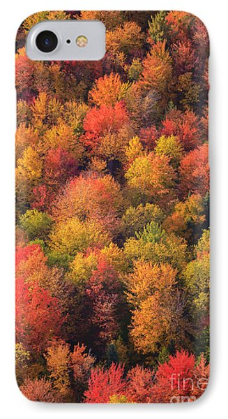 Aerial View Of Fall Foliage In Vermont IPhone Case