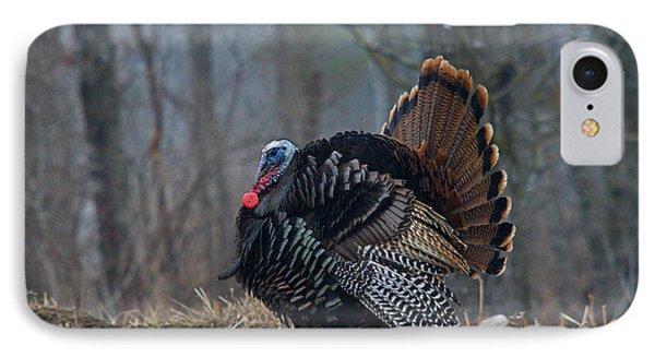 Jake Eastern Wild Turkey IPhone Case