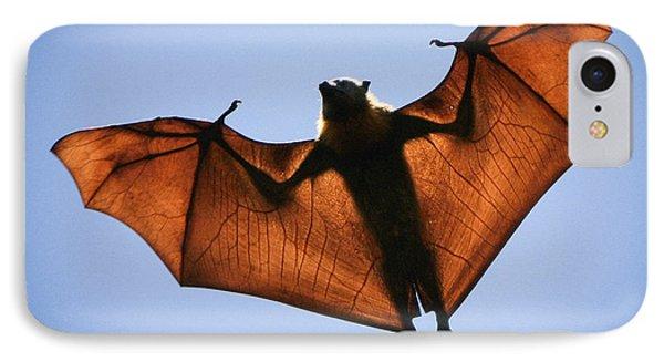 Flying Fox IPhone Case