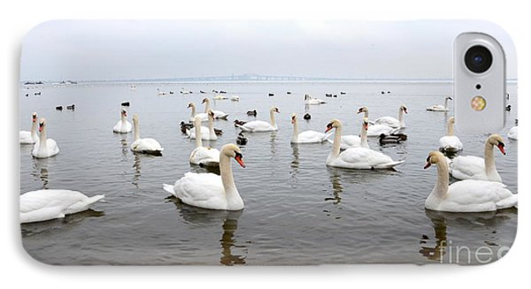 60 Swans A Swimming IPhone Case