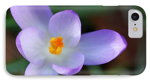 Vibrant Spring Crocus IPhone Case