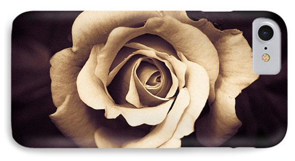 A Chocolate Raspberry Rose IPhone Case
