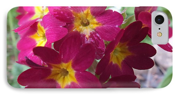 IPhone Case featuring the photograph A Close Look 4 by Gene Cyr