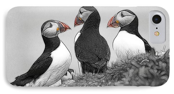 A Contemplation Of Puffins IPhone Case