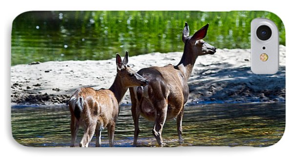 A Doe And Fawn IPhone Case