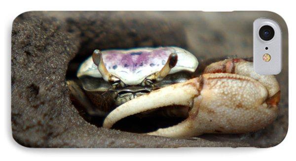 A Fiddler Crab Around Hilton Head Island IPhone Case