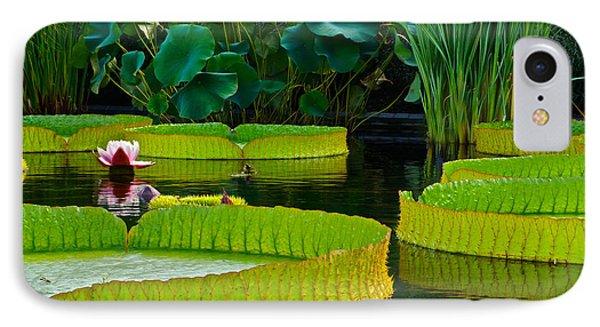 A Garden In Gentle Waters IPhone Case
