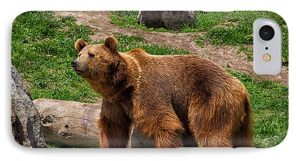 A Grizzly Bear IPhone Case