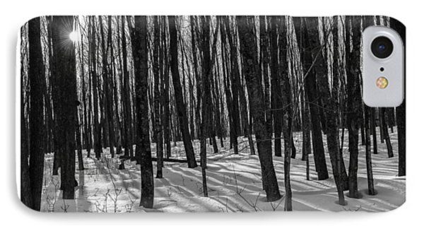 A Long Winter's Day IPhone Case
