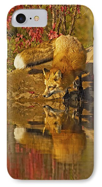 A Real Fox IPhone Case