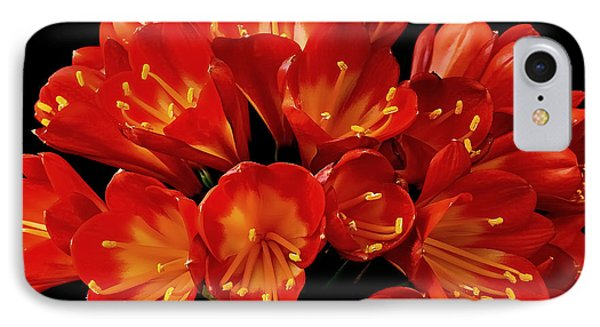 A Red Bouquet IPhone Case