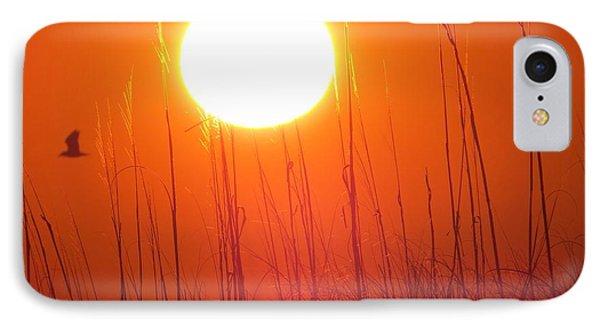 A Seagull's Sunrise IPhone Case