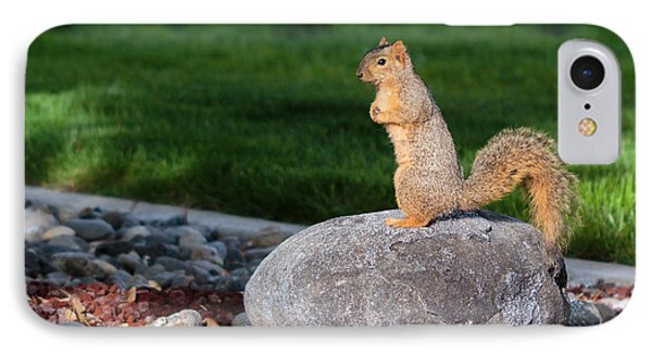 A Squirrel On A Rock IPhone Case