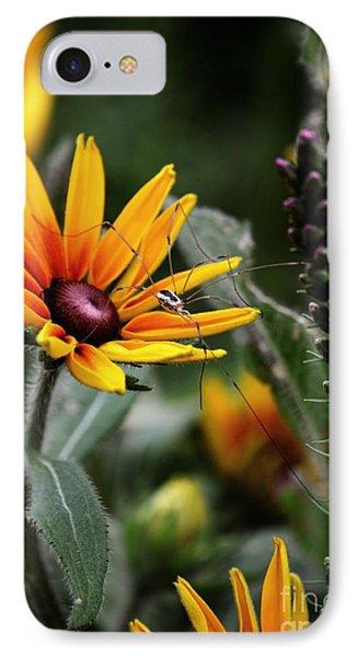 A Walk In The Garden IPhone Case