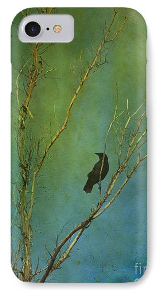 A Watchful Eye IPhone Case
