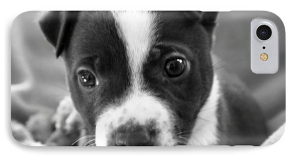 Abby The Rescued Dog IPhone Case