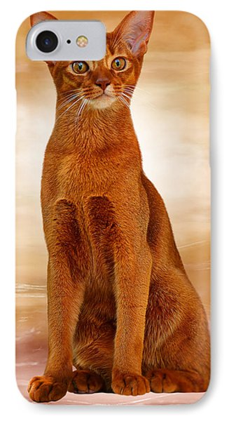 Abyssinian Cat Sorrel Color IPhone Case