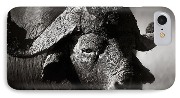 African Buffalo Bull Close-up IPhone Case