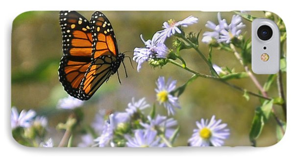 Alighting Monarch IPhone Case