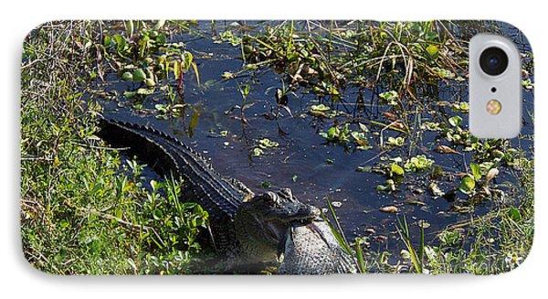 Alligator 020 IPhone Case