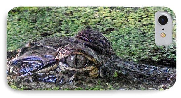 Alligator 027 IPhone Case