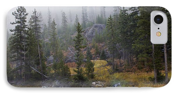 Along The Gibbon In Fall IPhone Case