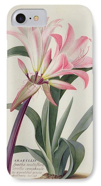 Lily iPhone 8 Case - Amaryllis Belladonna, 1761 by Georg Dionysius Ehret