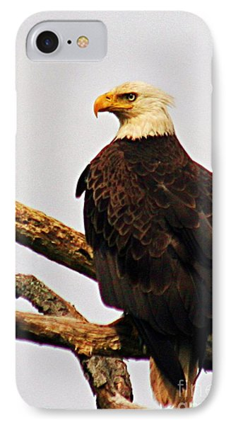 An Eagle's Perch IPhone Case
