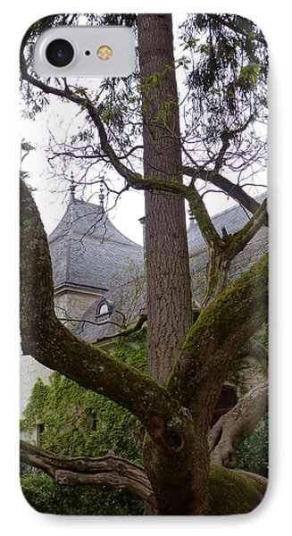 Ancient Tree At Chateau De Chenonceau IPhone Case
