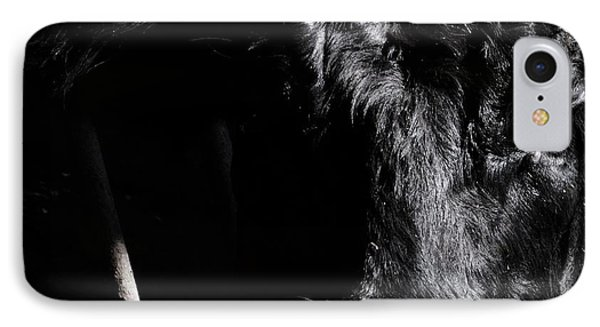 Angus Appeal IPhone Case