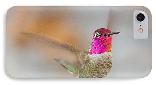 Anna's Hummingbird IPhone Case