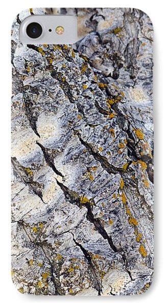 Aspen Bark IPhone Case