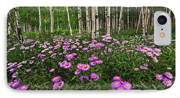 Aspens And Asters IPhone Case