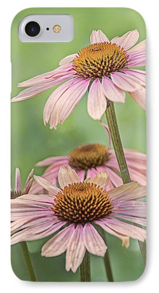 August Coneflowers IPhone Case