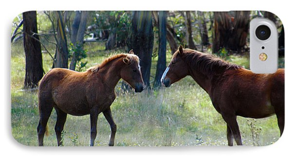 Australian Brumby IPhone Case