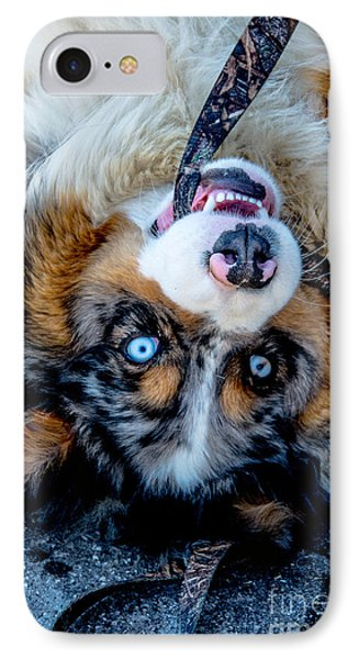 Australian Shepherd IPhone Case