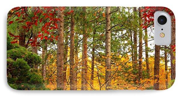 Autumn Canvas IPhone Case