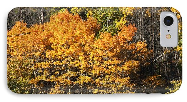Autumn Color At The Continental Divide IPhone Case