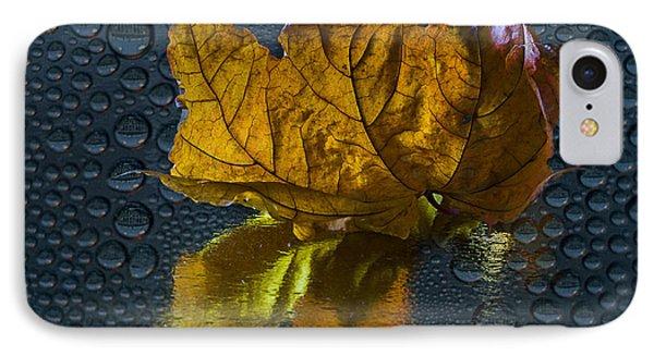 Autumn Fantasy 2 IPhone Case