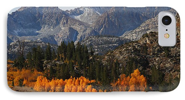 Autumn In Bishop Canyon In The Eastern Sierras IPhone Case